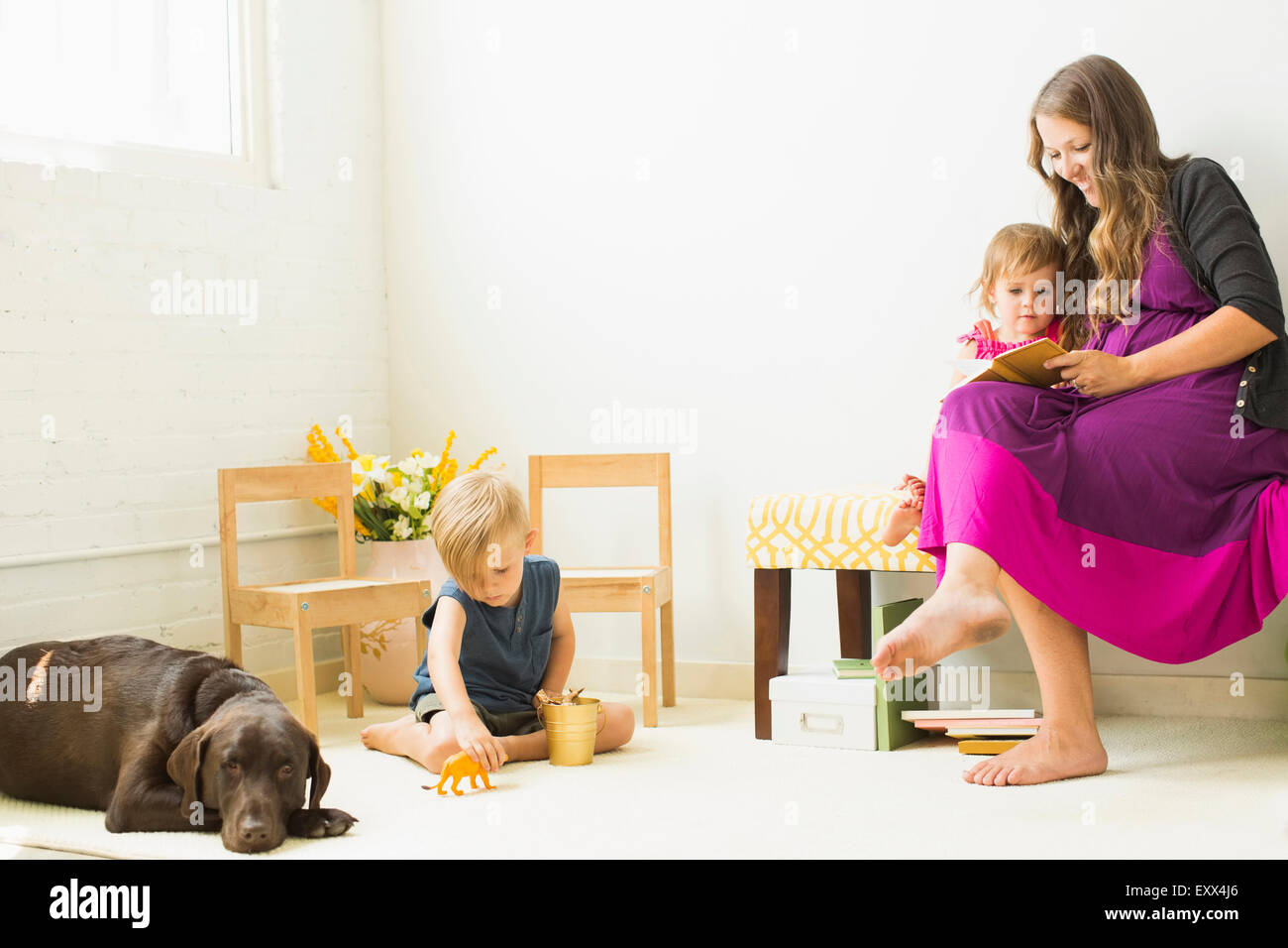 Mother reading to daughter (2-3) while son (2-3) playing on carpet - Stock Image