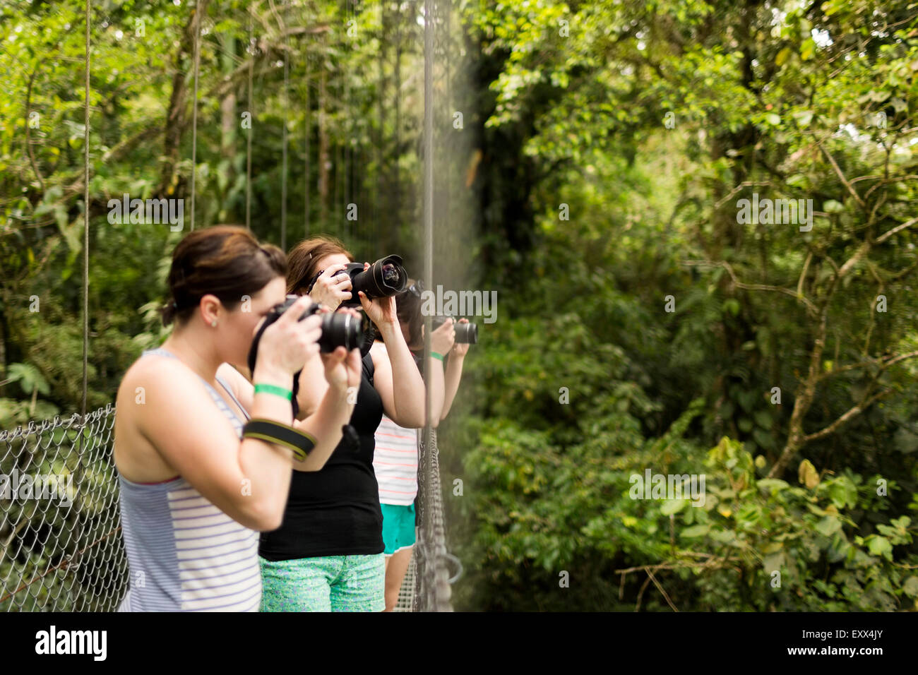Young women photographing in forest - Stock Image
