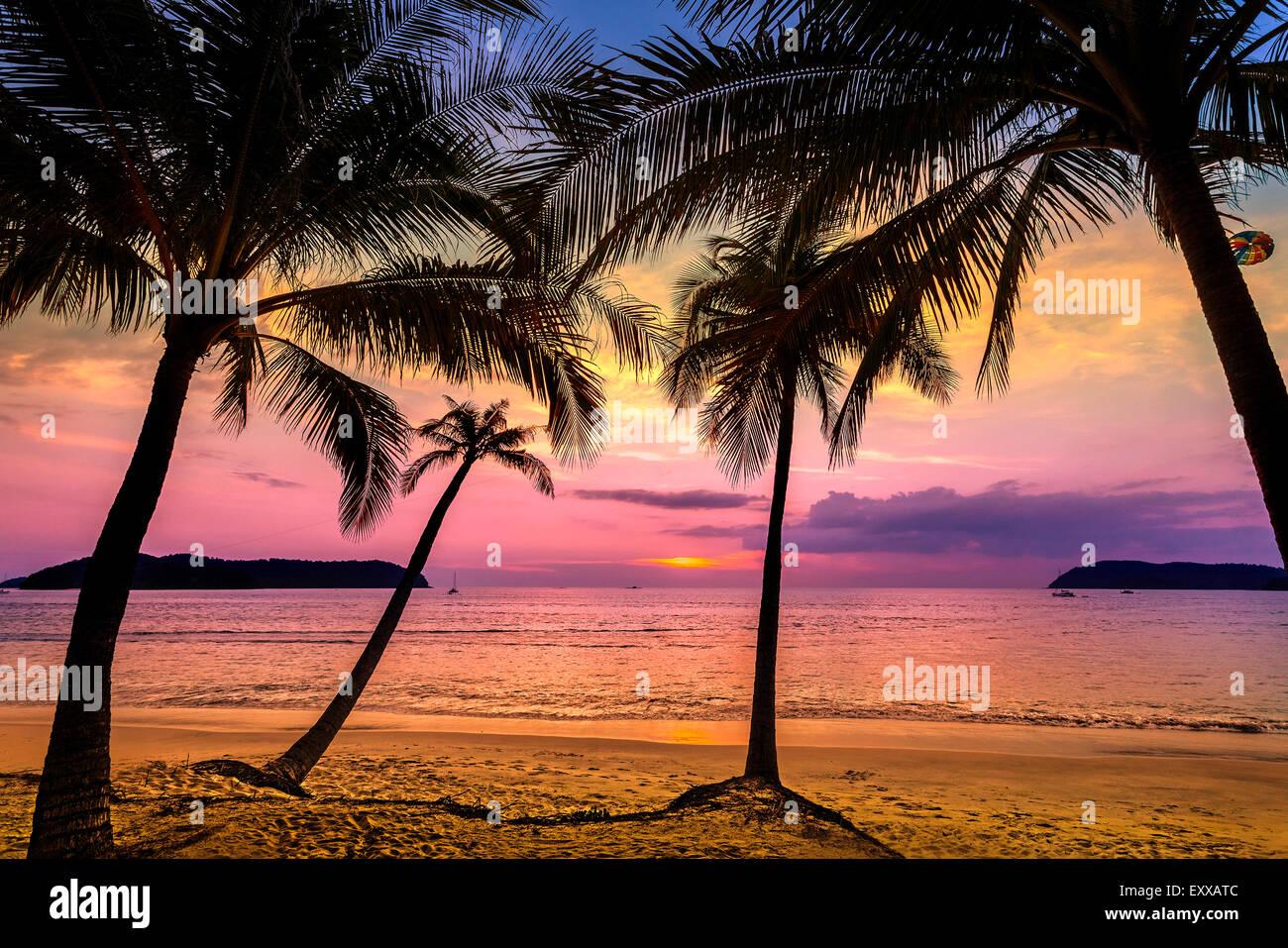 Purple sunset over beach, summer holidays background. - Stock Image