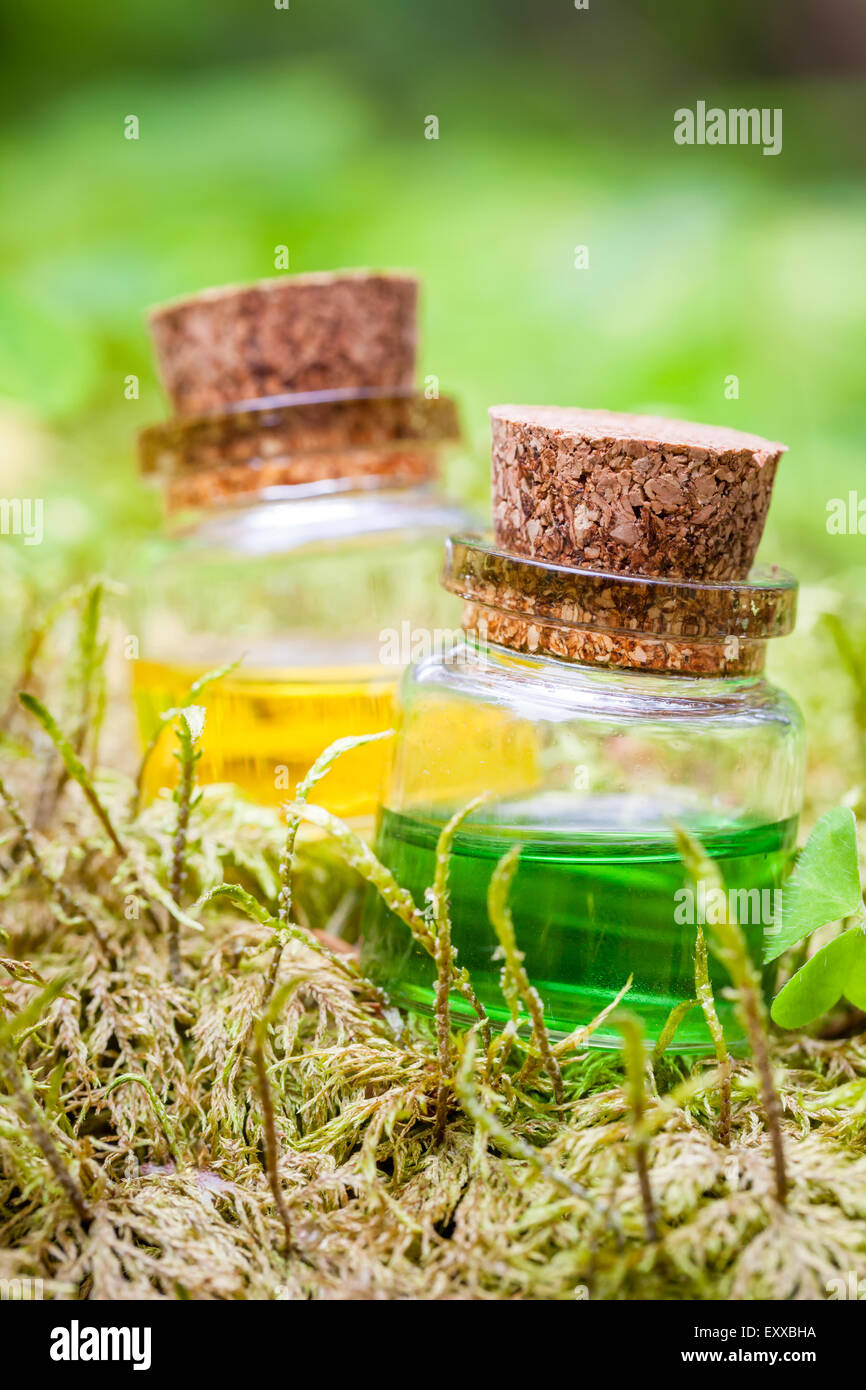 Two bottles of essential oil or magic potion on moss in forest - Stock Image