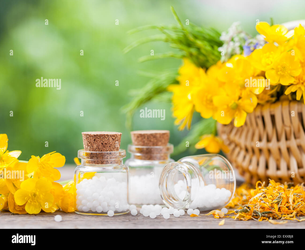 Bottles of homeopathy globules and healthy herbs in basket. - Stock Image