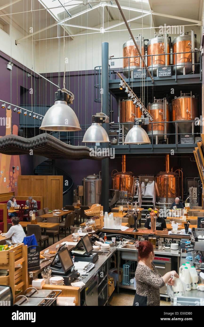 Inside a micro brewery brewing real ale craft beer in Greenwich, London, England, UK - showing the copper vats and Stock Photo