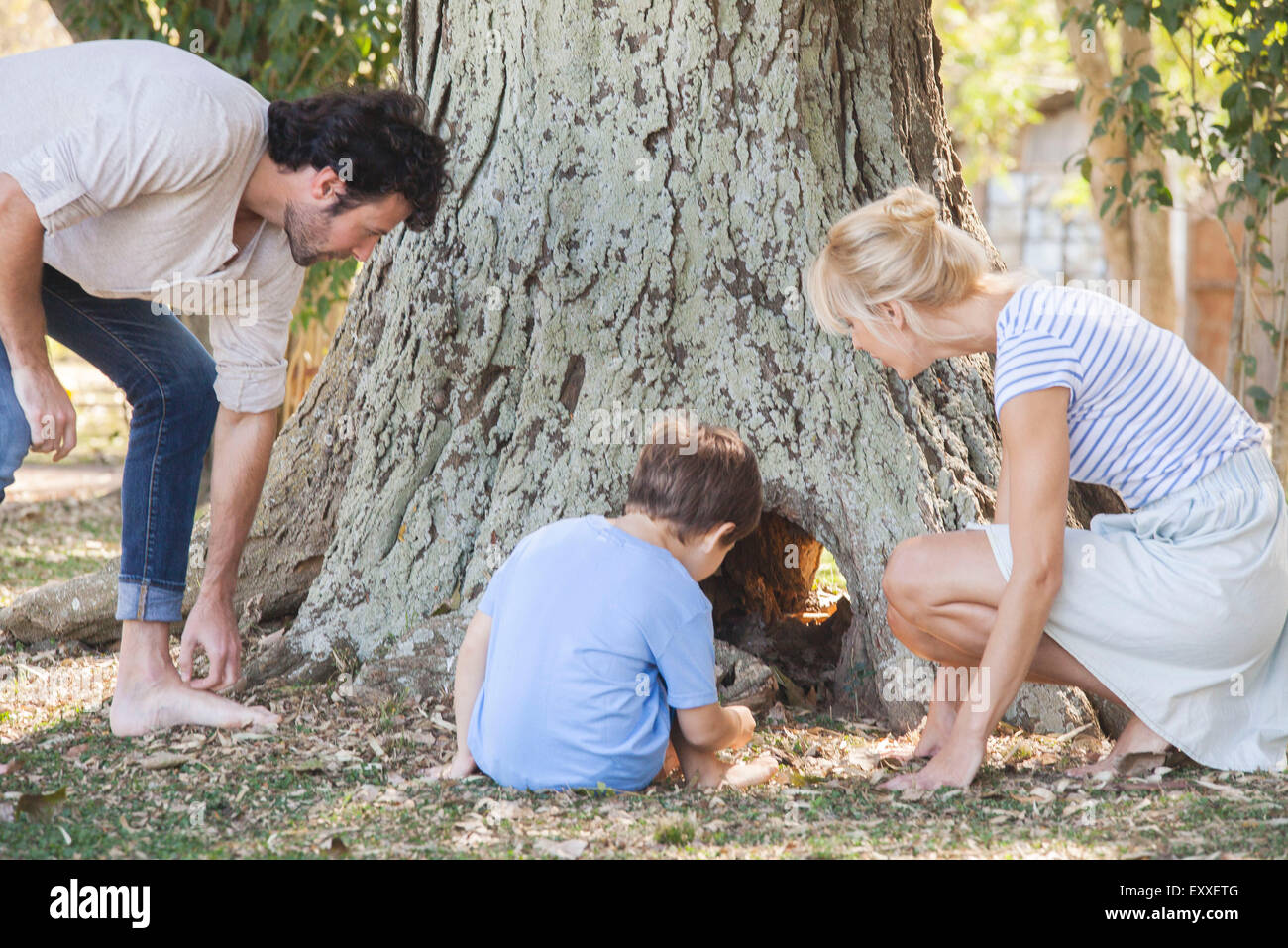 Family discovering hollow tree trunk - Stock Image