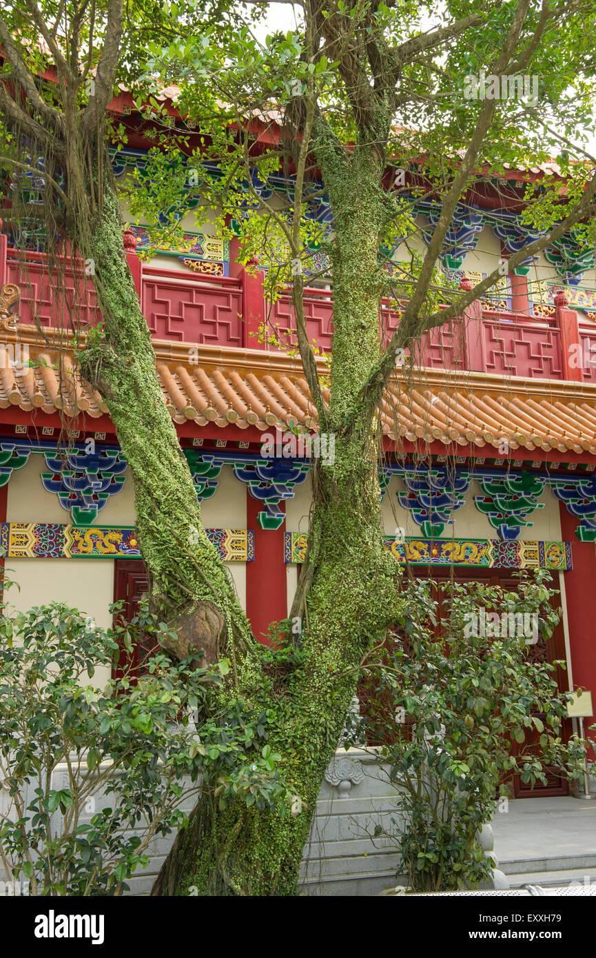 Temple on Ngong Ping Plateau, Lantau Island Hong Kong China - Stock Image