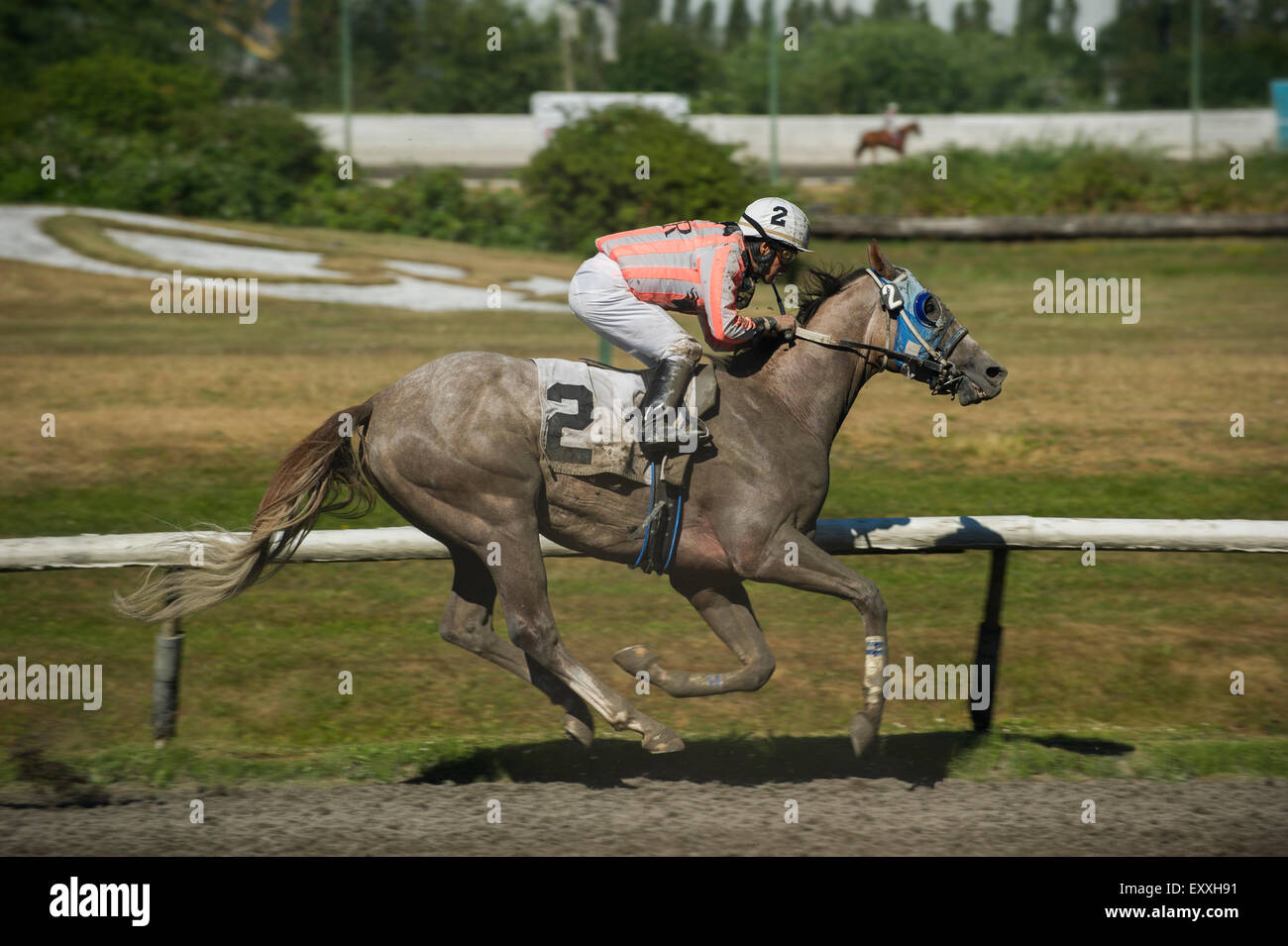 Jockey racing at Vancouver Hastings Exhibition Park race track. - Stock Image