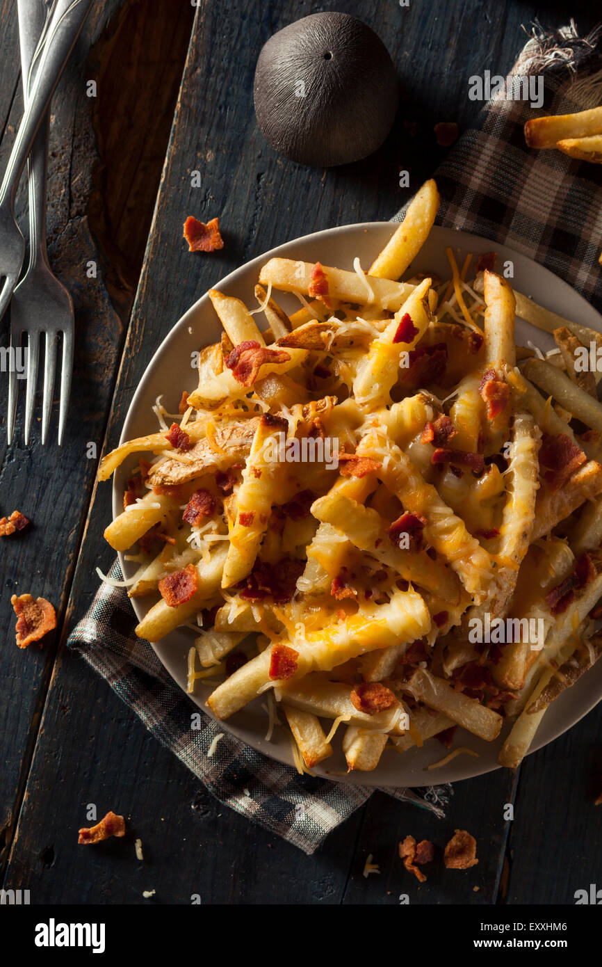 Homemade Salty Cheese French Fries with Bacon - Stock Image