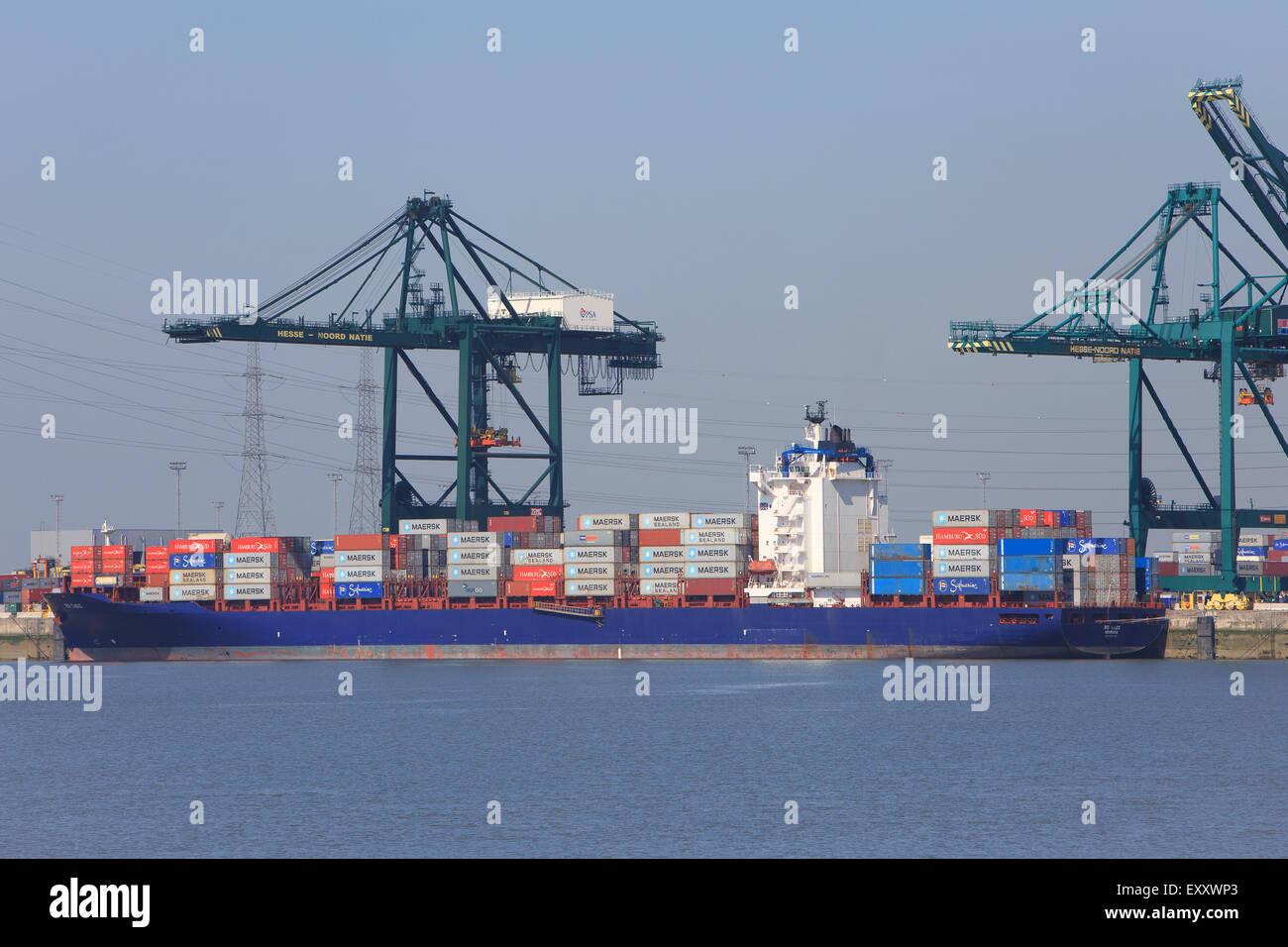 The Rio Cadiz container ship from Monrovia, Liberia moored in the Port of Antwerp, Belgium - Stock Image