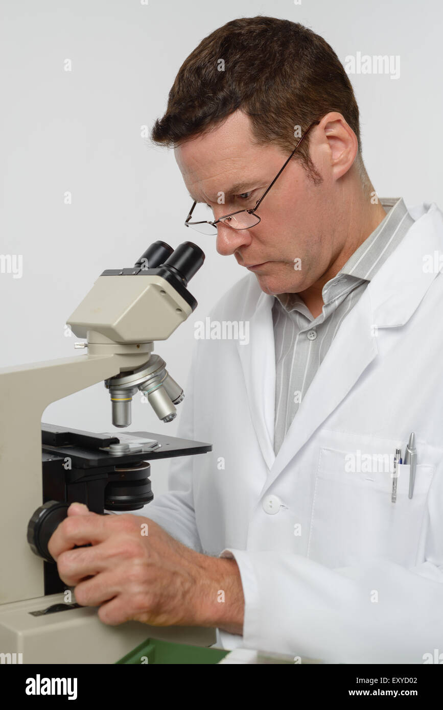 Mature scientist or associate professor performs microscopy - Stock Image