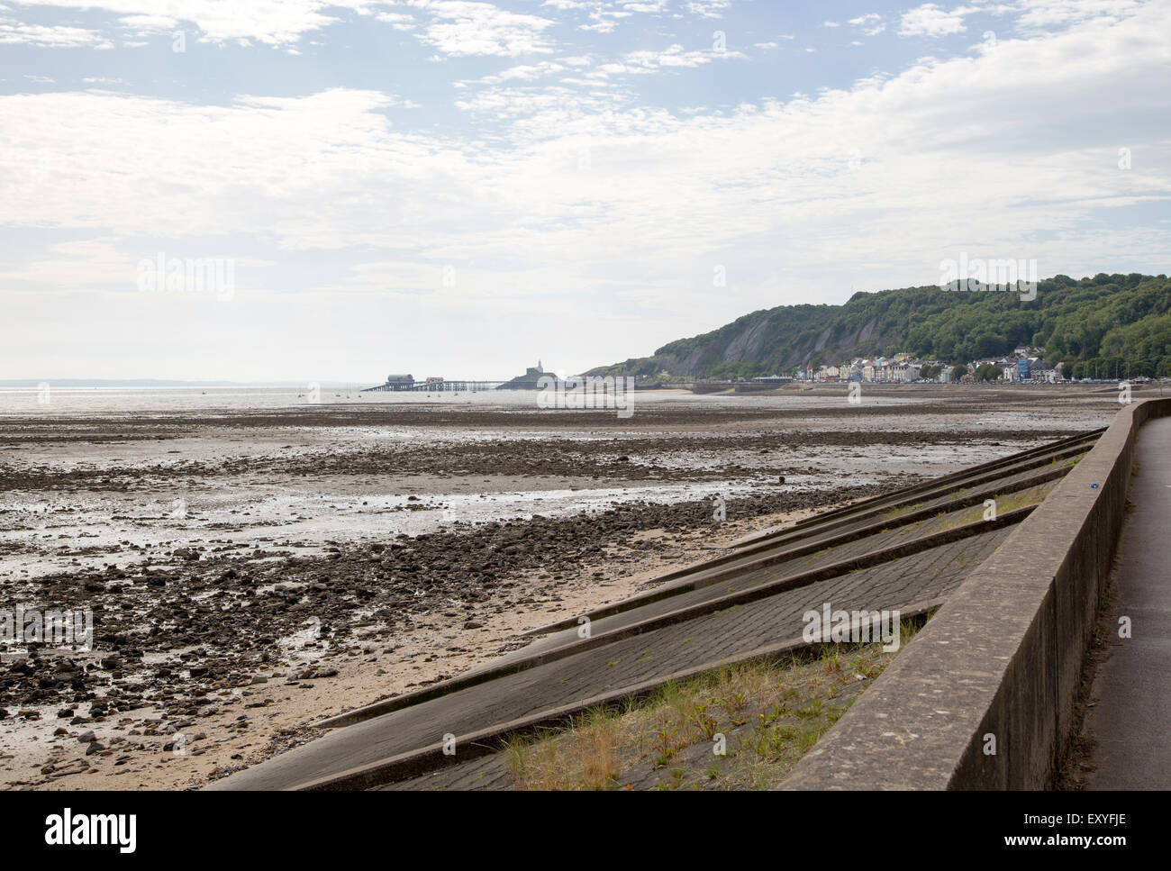 Wide beach at low tide, Swansea bay, Mumbles, Gower peninsula, South Wales, UK - Stock Image