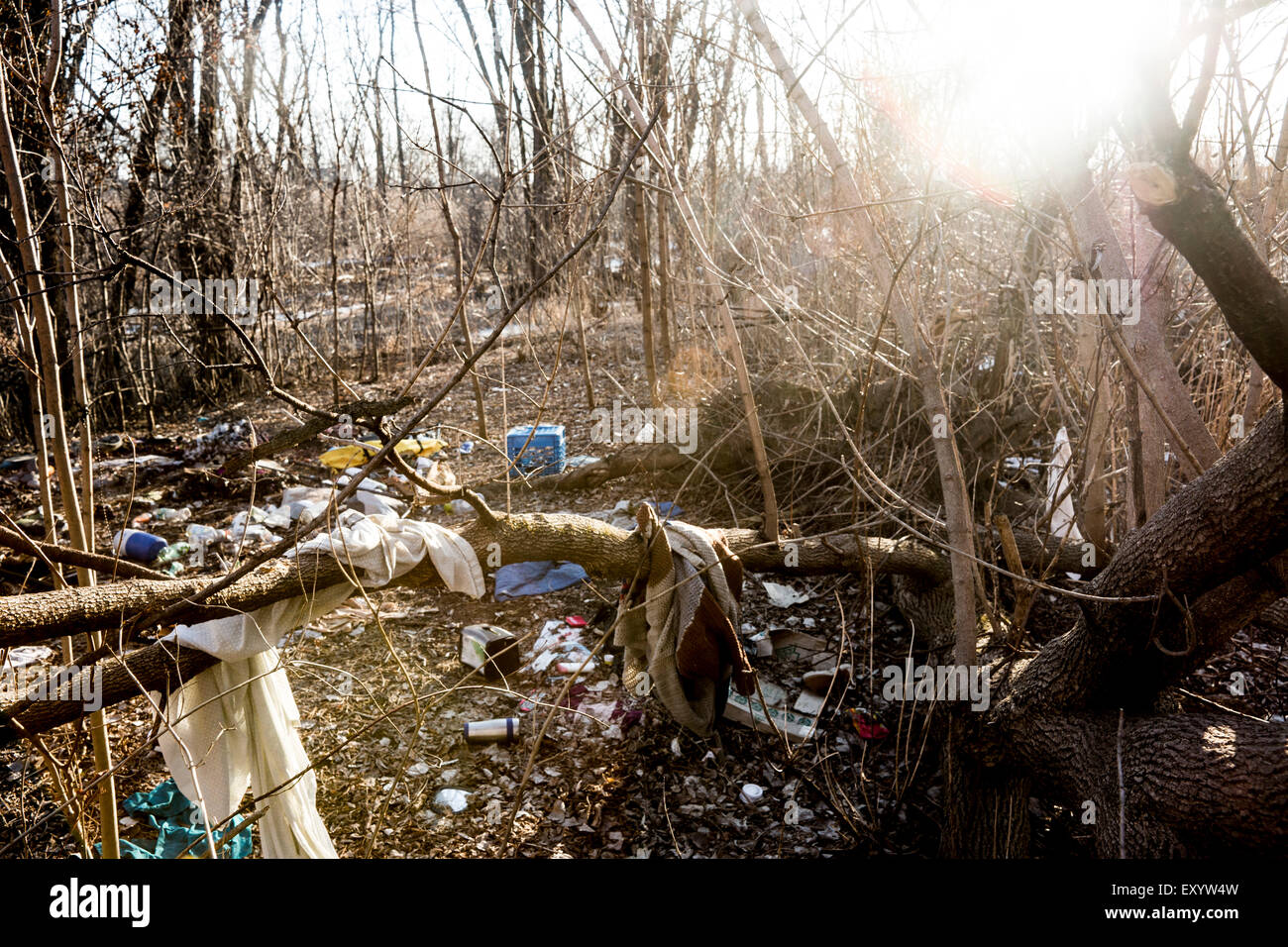 An abandoned squatter's home in the woods. - Stock Image