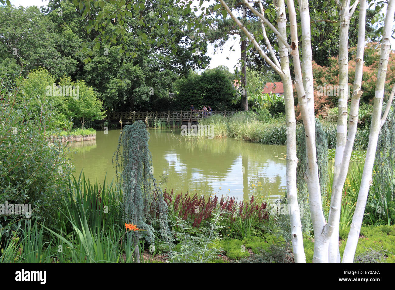 Seven Acres Lake, Royal Horticultural Society Arts Fest, RHS Garden Wisley, Woking, Surrey, UK. 18th and 19th July Stock Photo