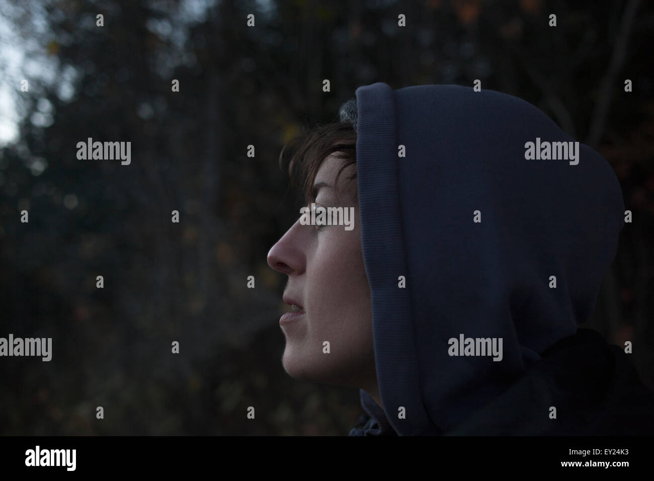 Close up portrait of mid adult woman gazing from forest at dusk - Stock Image