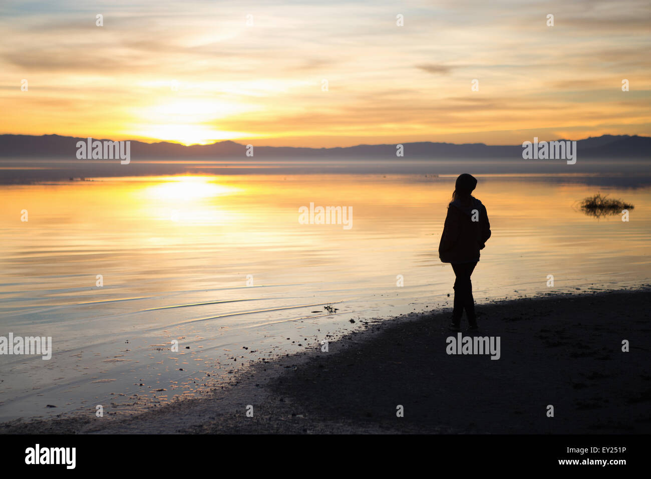 Young woman standing at water's edge, watching sunset, rear view - Stock Image