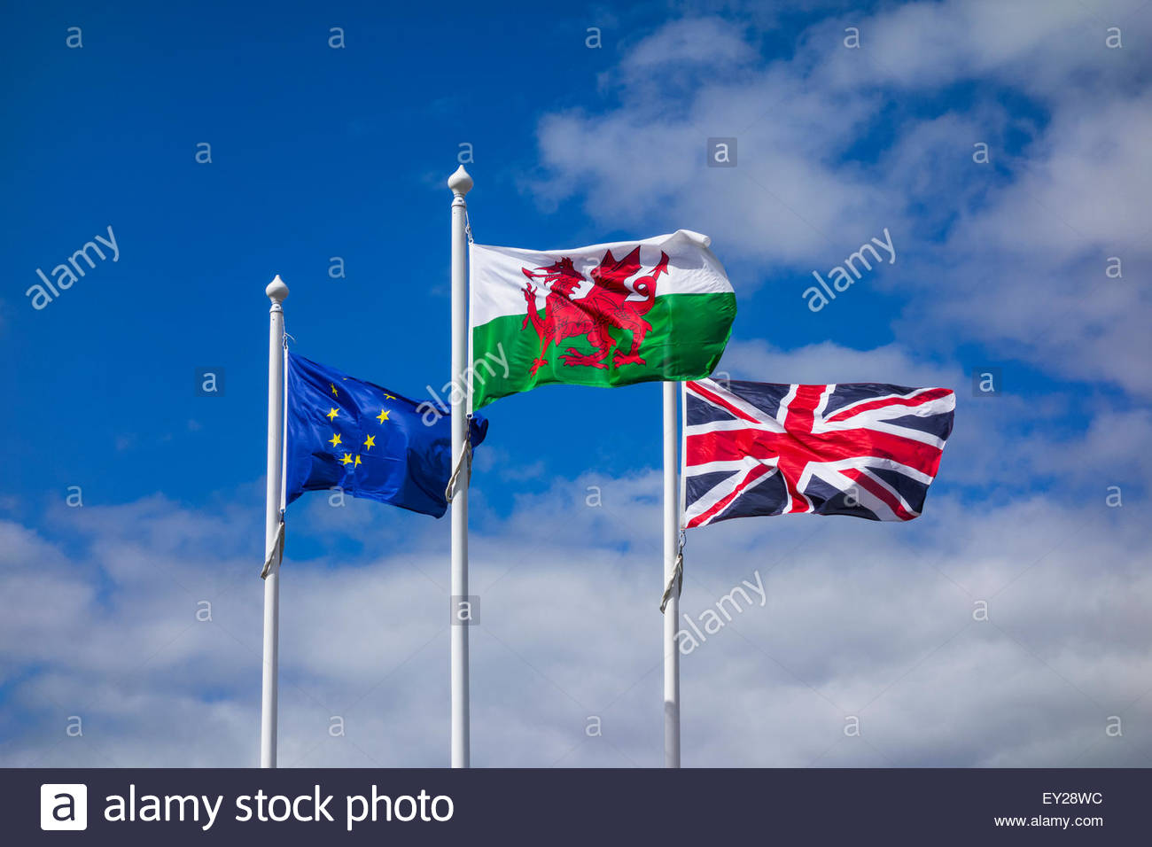 Flags of Wales United Kingdom and European Union – EU flag Union Jack and Welsh flag - Stock Image