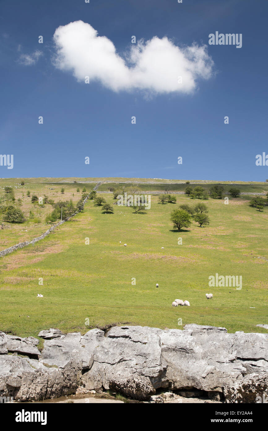 Limestone pavement, fellside and blue skies, Upper Wharfdale, ' Yorkshire Dales National Park, North Yorkshire, - Stock Image