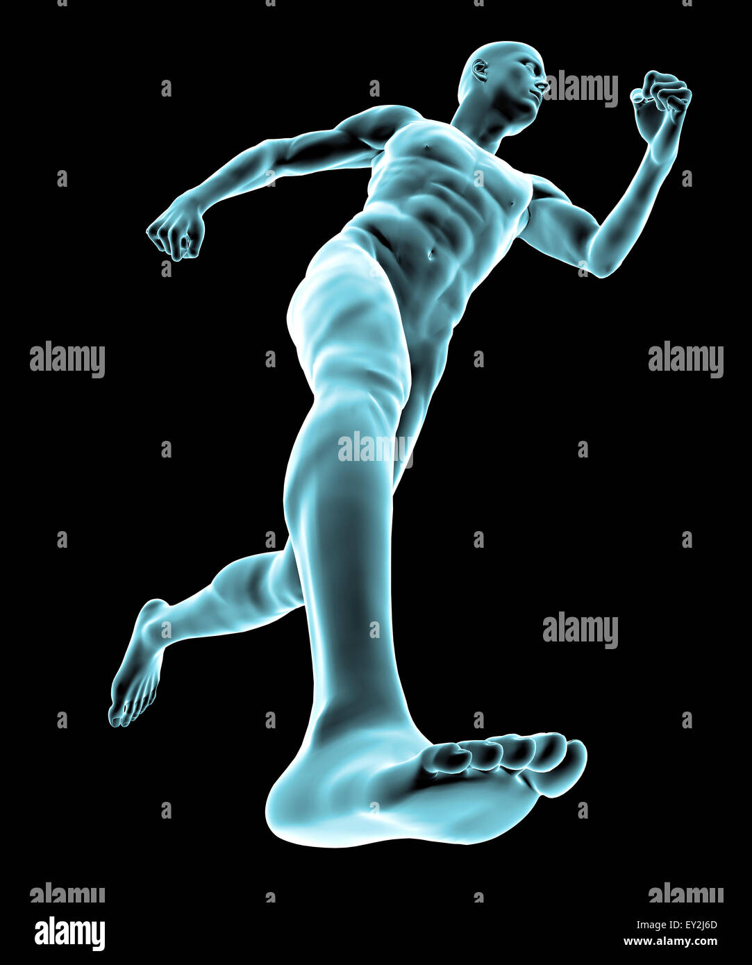 3d X ray of human body and skeleton Stock Photo: 85495381