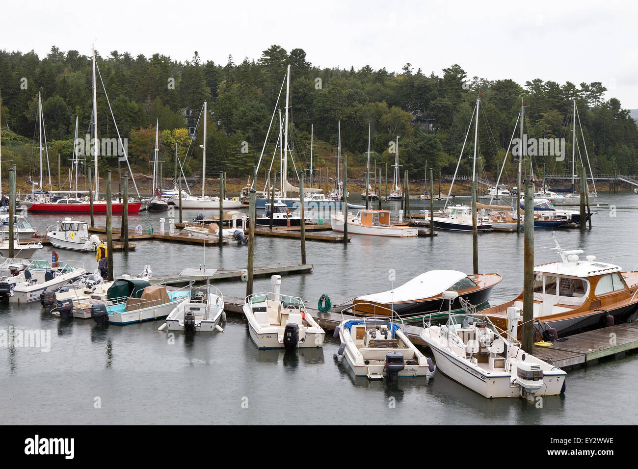 Boats in a marina Northeast Harbor, near Acadia National Park, Maine, United States of America - Stock Image