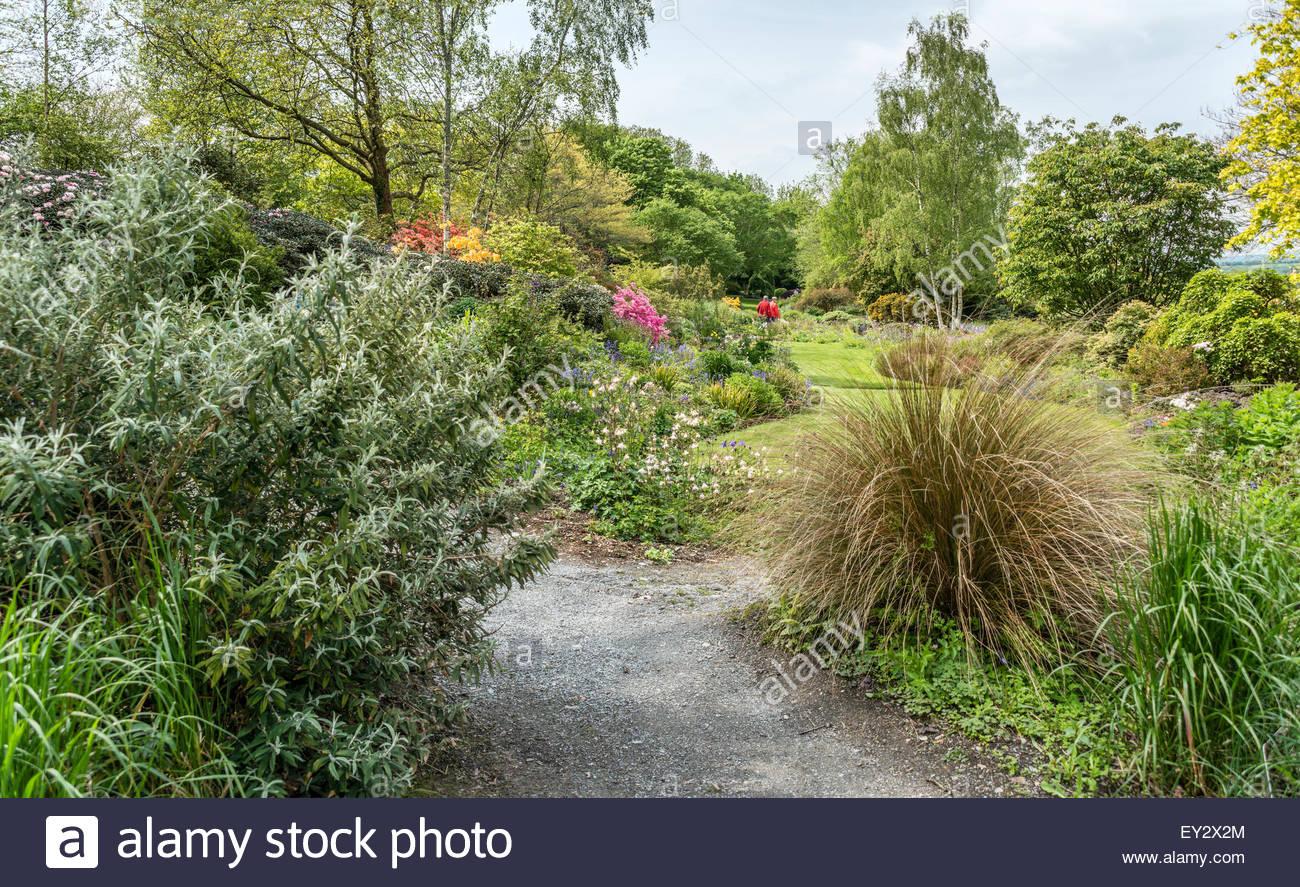 Summer Garden at the The Garden House, Yelverton, Devon, England - Stock Image