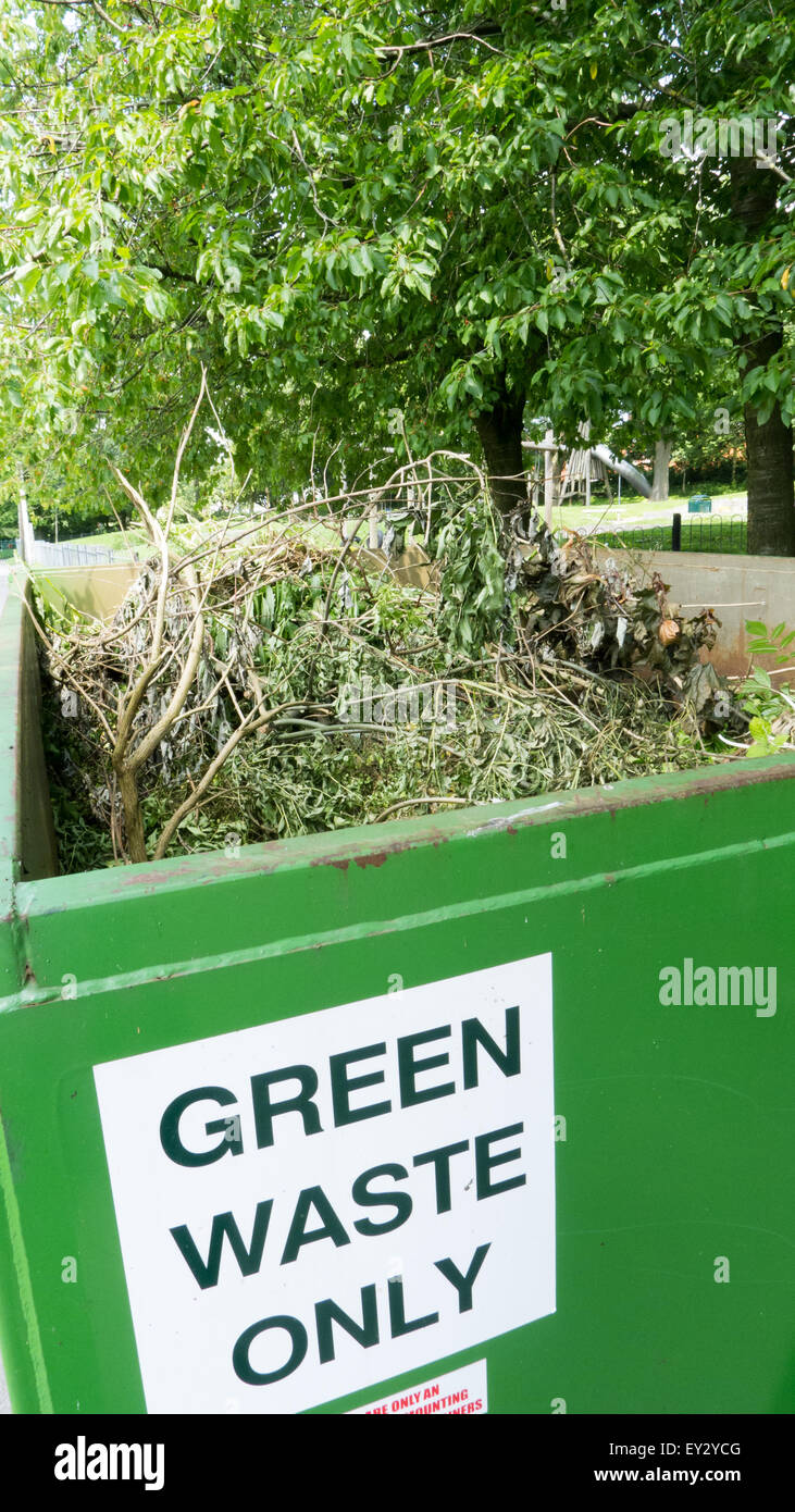 Green waste skip - Stock Image