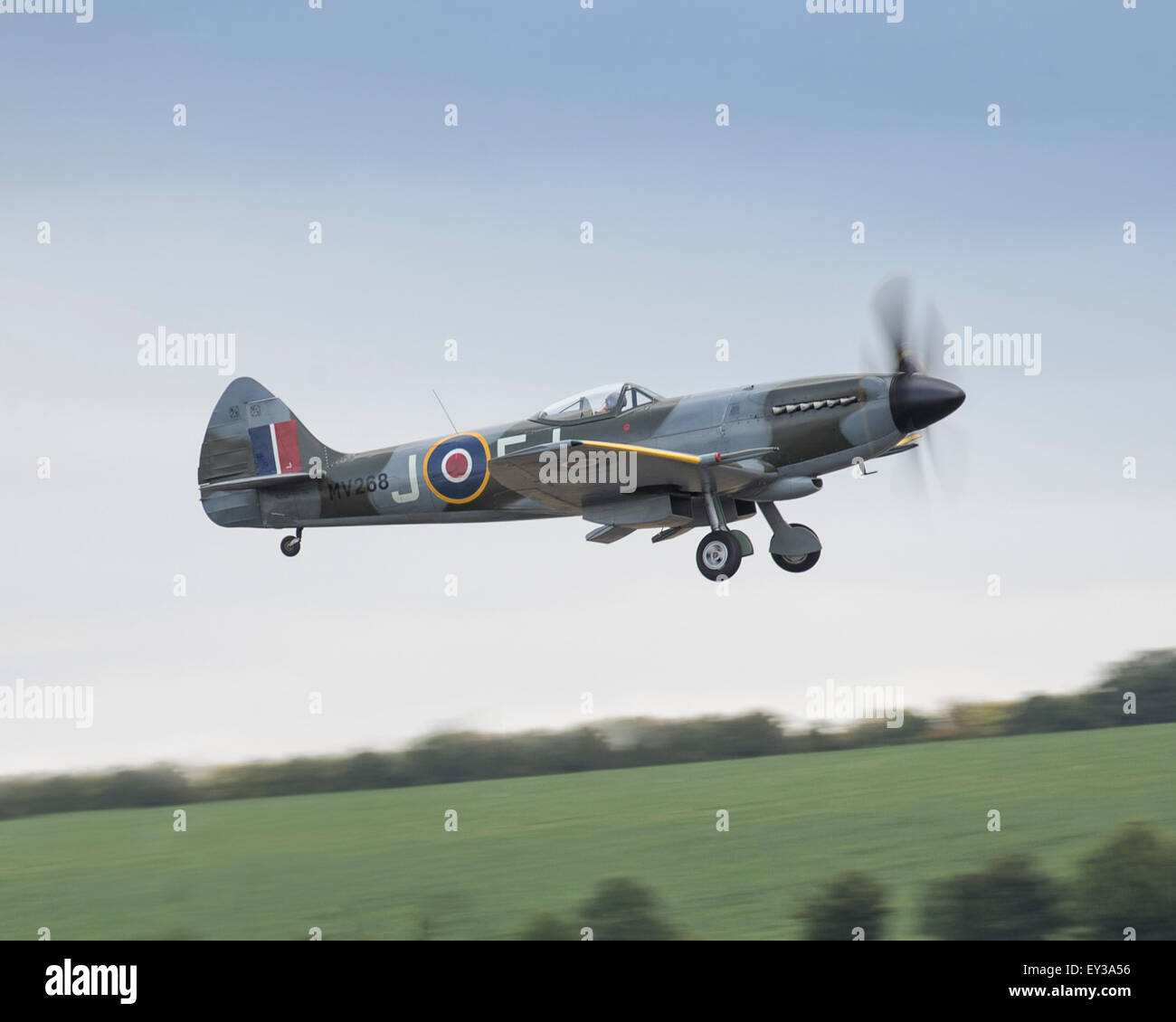 Supermarine Spitfire FR XIV of The Fighter Collection at the 2015 Flying Legends air show - Stock Image