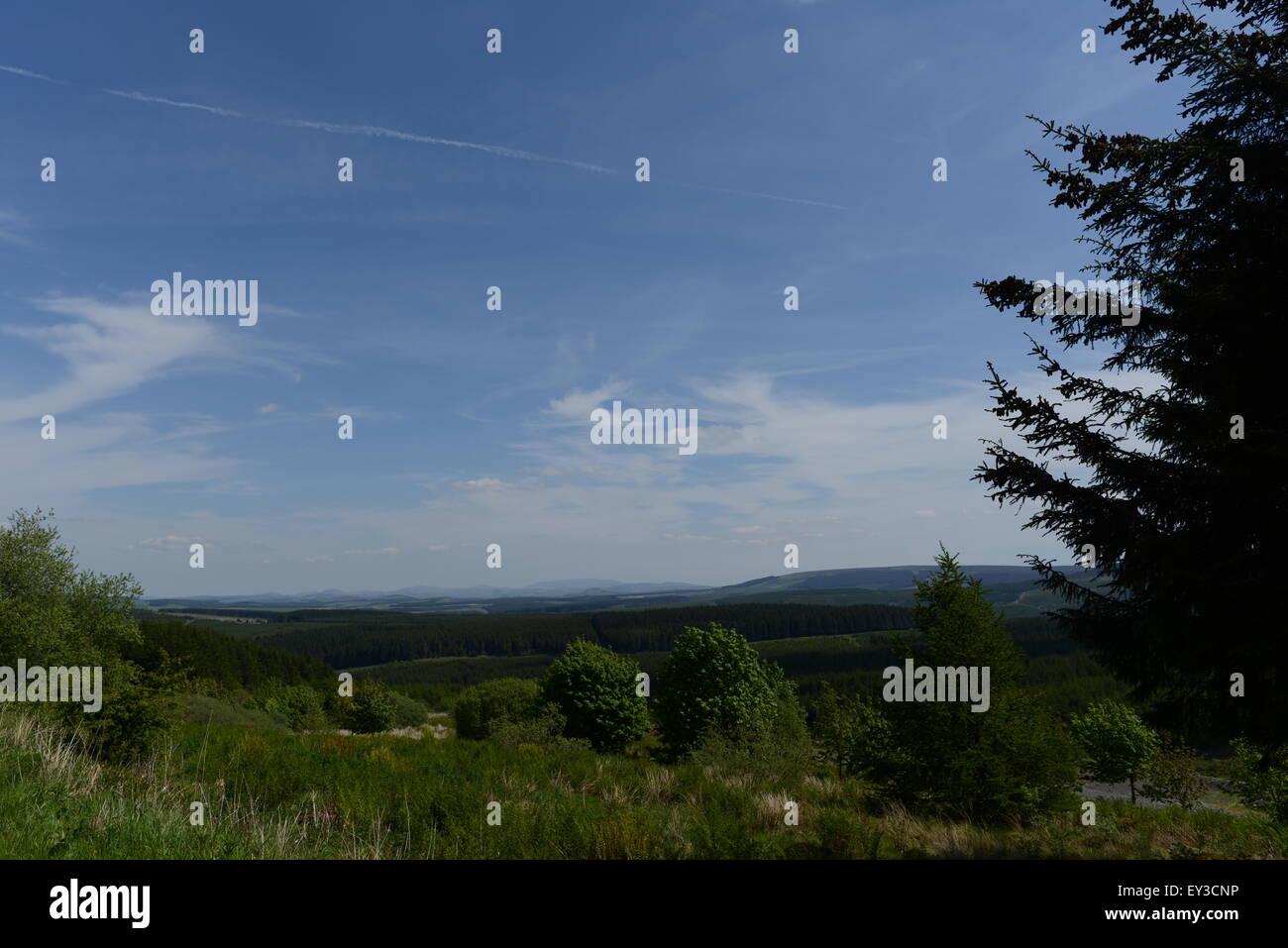 view scottish border country - Stock Image