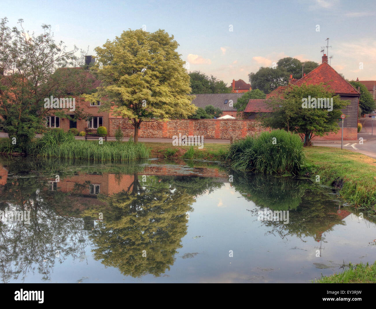The pond, East Ilsley,West Berkshire,England,UK - Stock Image