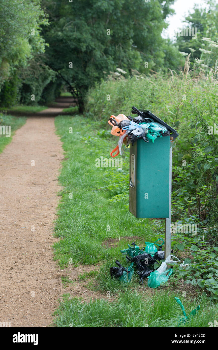 Overflowing Dog waste bin on a woodland path in the english countryside. UK - Stock Image