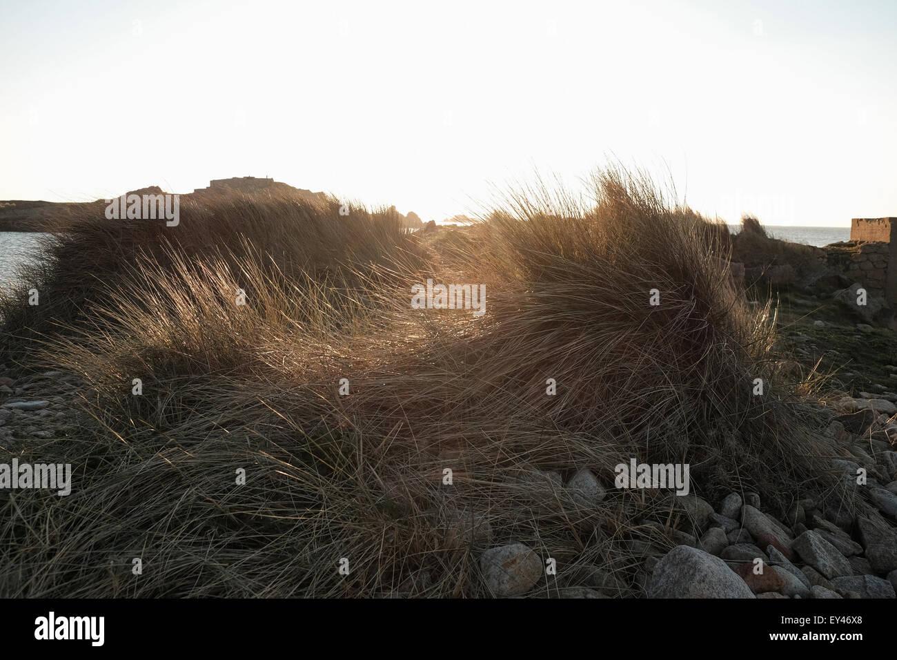 Vazon beach Guernsey before sunset - Stock Image