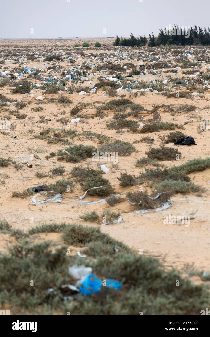 field with plastic bag rubbish, El Alamein, Egypt - Stock Image