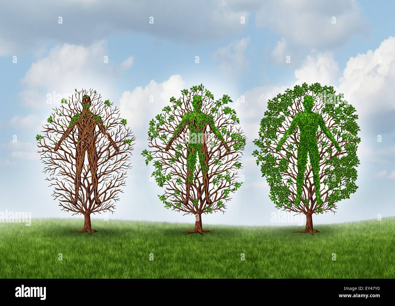 Cure and recovery concept and healing through rehabilitation therapy symbol as an empty tree gradually growing healthy - Stock Image