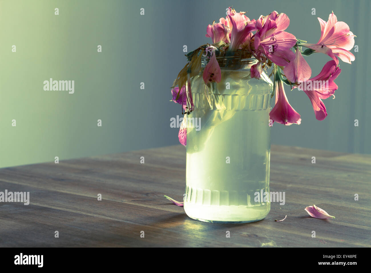 Melancholic scene of a jar with flowers - Stock Image
