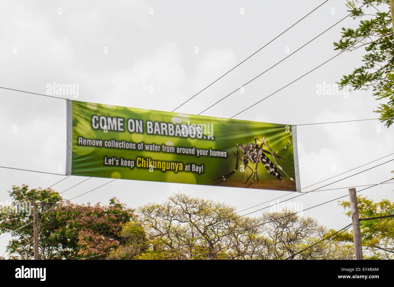 Warning sign for Chikungunya,   Barbados. - Stock Image