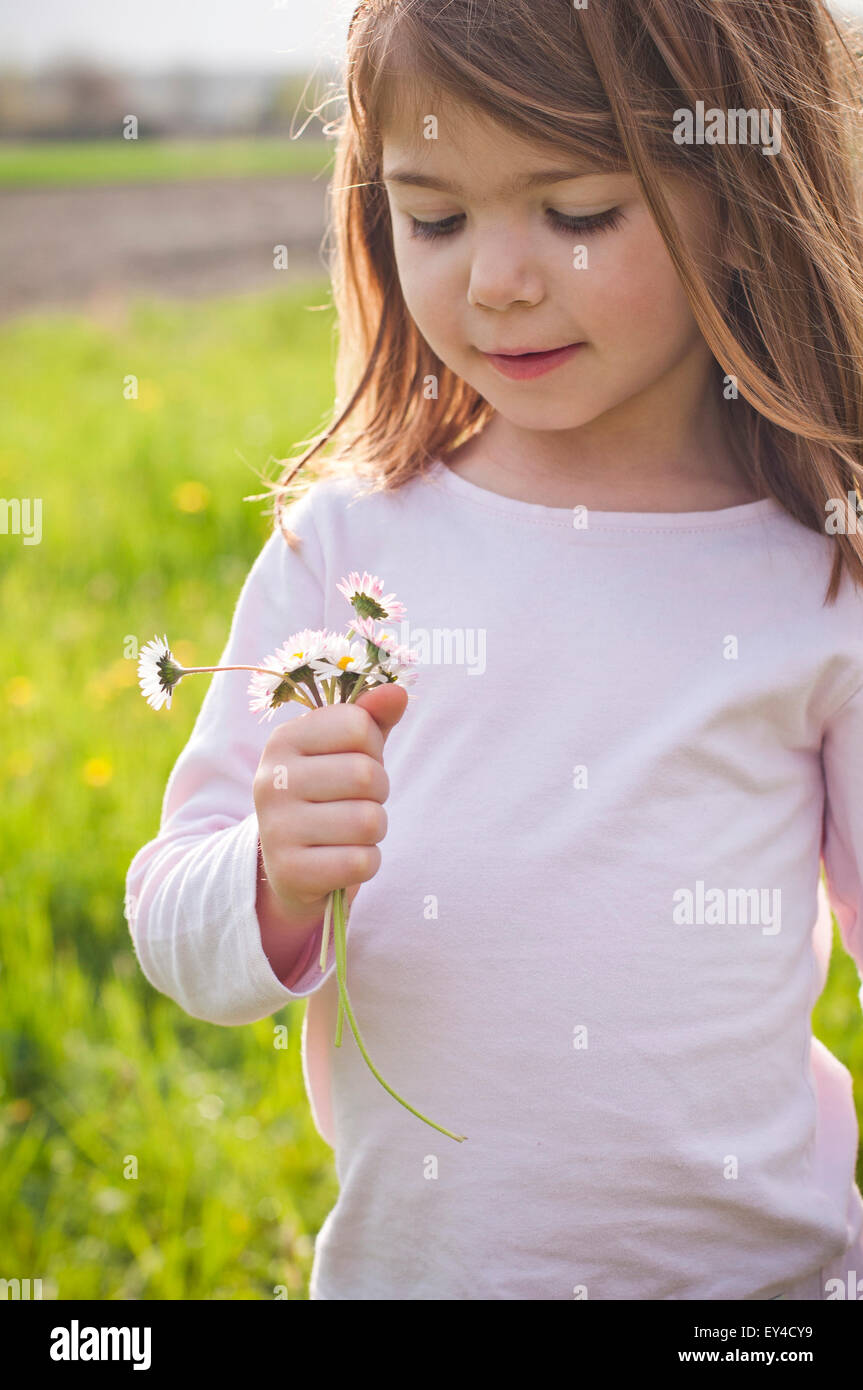 Smiling Young Girl in Field Looking at Daisies in Her Hands - Stock Image
