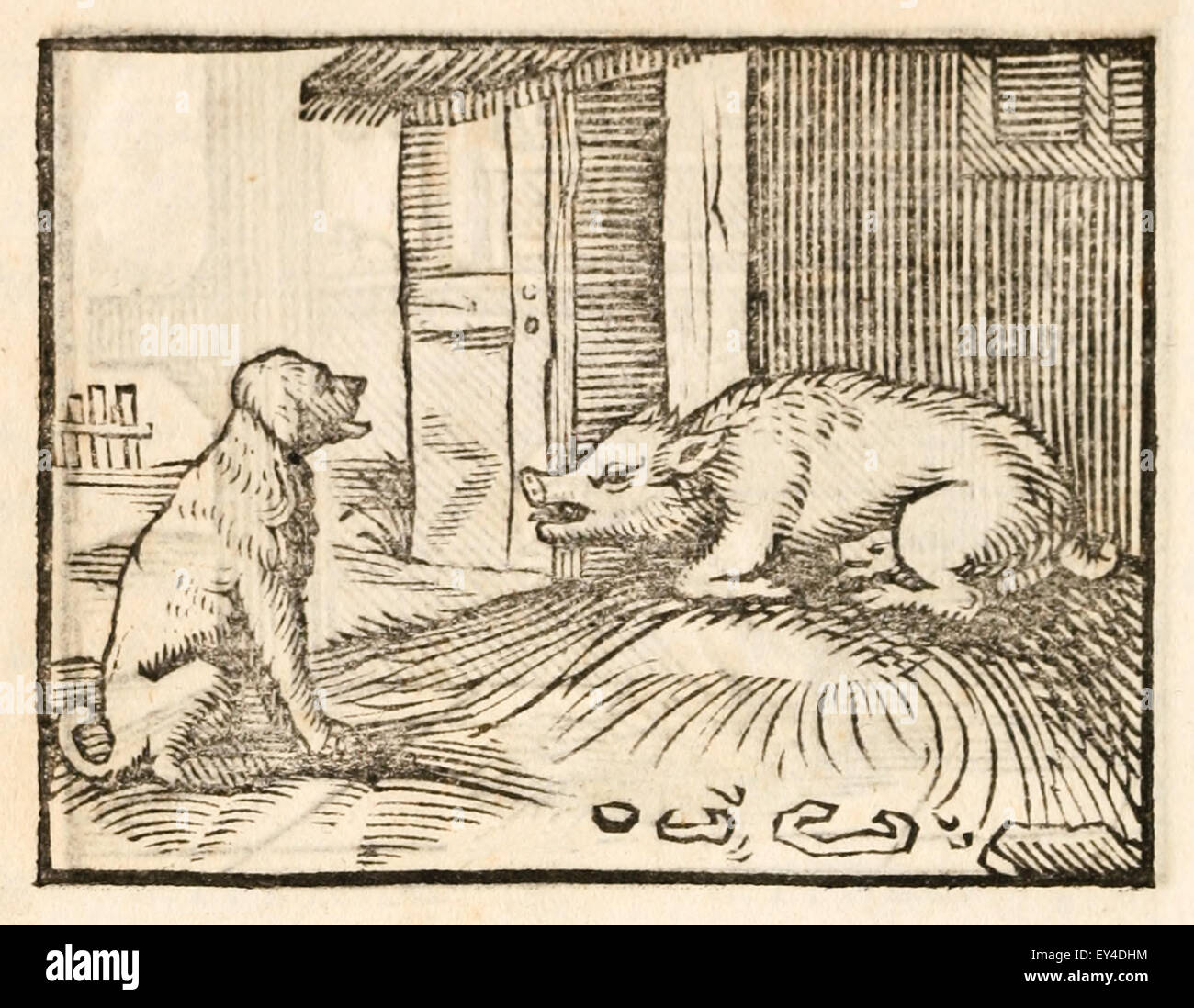'A Sow and A Dog' fable by Aesop (circa 600BC).  A Sow and Dog argued. The Sow swore by Venus she would - Stock Image