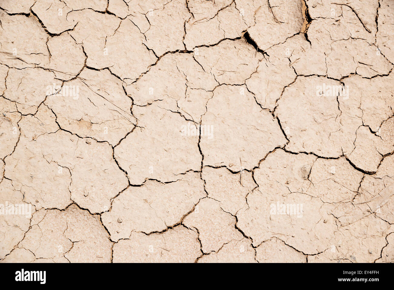 Image parched earth in middle east Oman for abstract background texture - Stock Image
