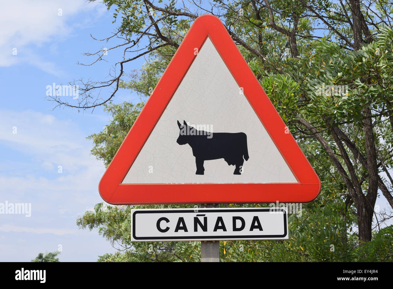 Cattle Crossing Sign High Resolution Stock Photography And Images Alamy