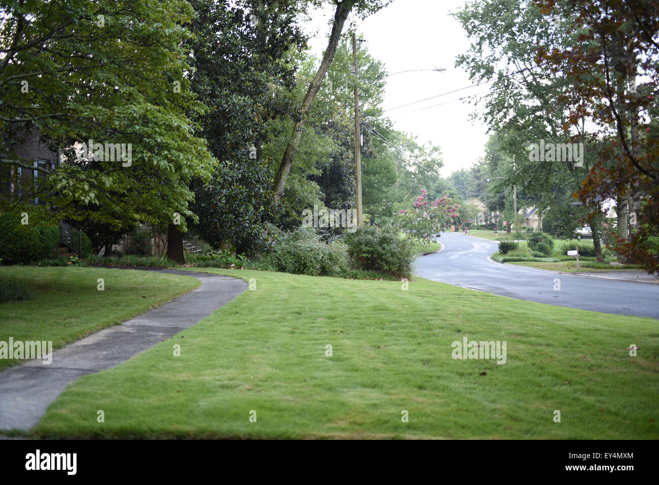 front yard freshly cut lawn and suburbs - Stock Image