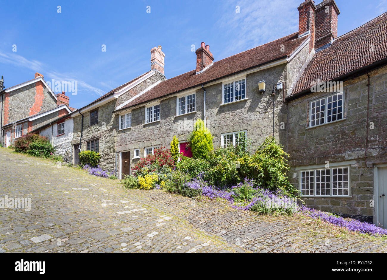 Pretty local style cottages on the steep Gold Hill, Shaftesbury, Dorset, UK in summer, the location for the Ridley - Stock Image