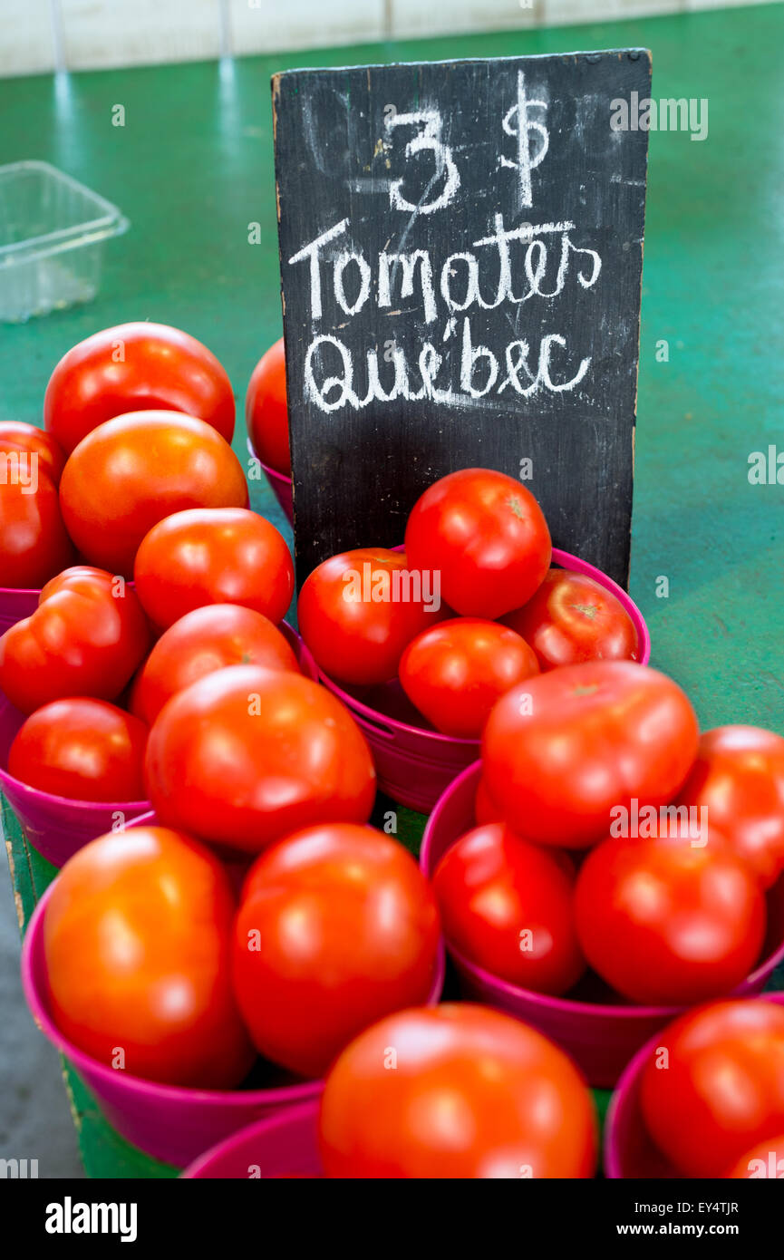 Quebec Tomatoes at the Market - Stock Image