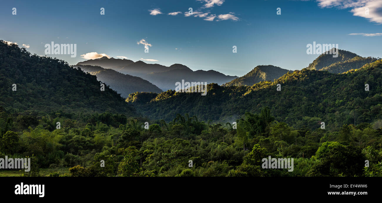 Morning light shines on mountains and rain forest. Mindo, Ecuador. - Stock Image