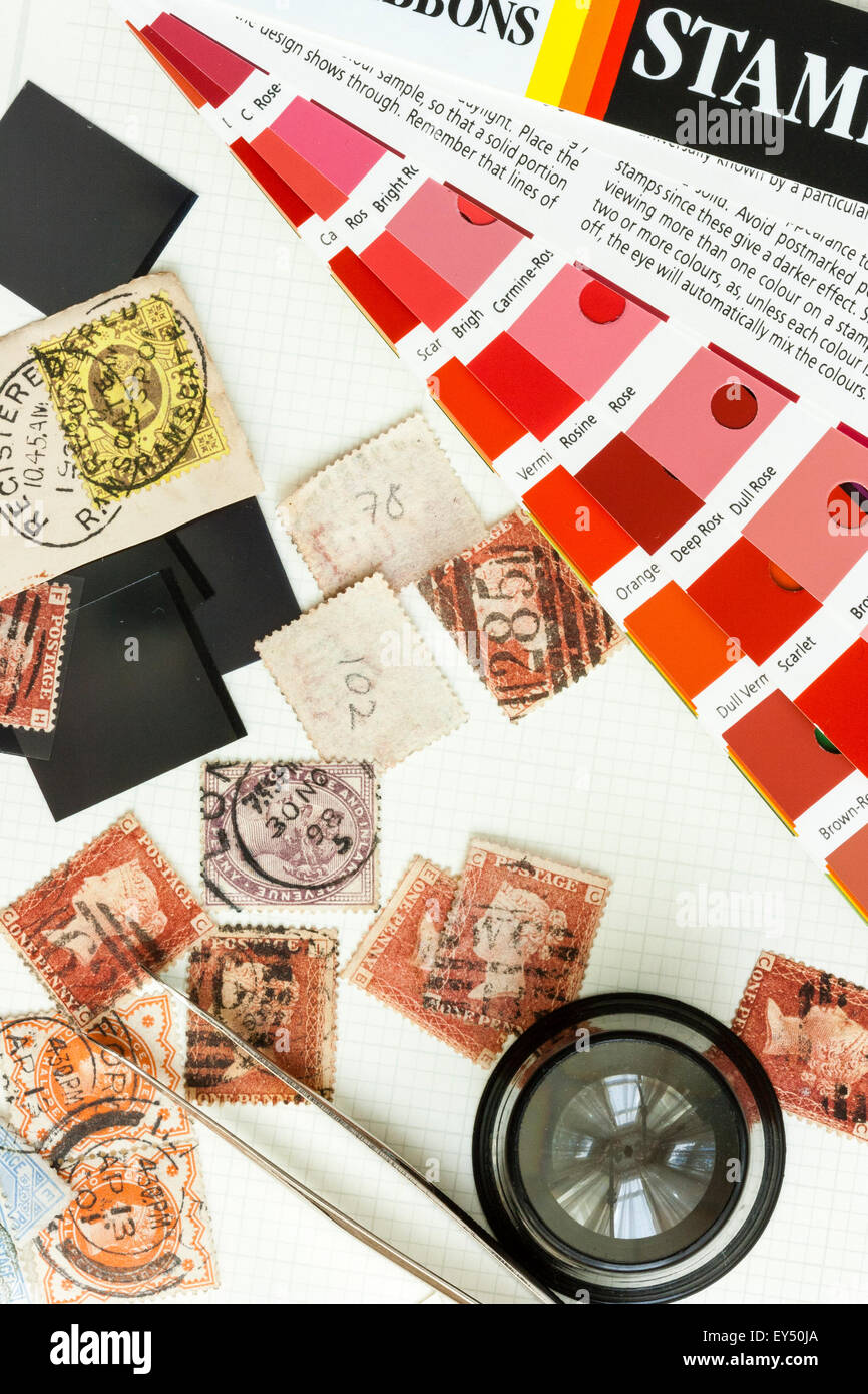 Philately, stamp collection. Album page with scattered British Victorian penny reds with magnifier, tweezers and - Stock Image