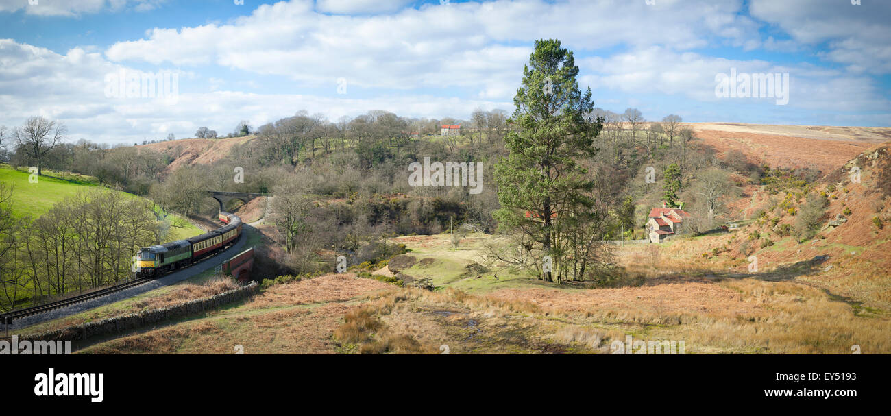 Scenic view of old diesel train and carriages running through North Yorkshire, near Goathland North Eastern railway - Stock Image