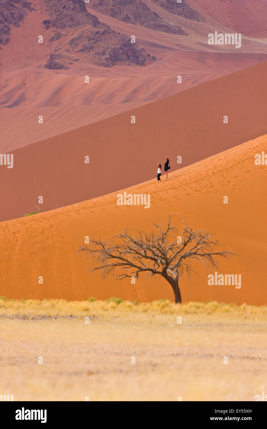 Dune 45 - Namib Desert Namibia Stock Photo
