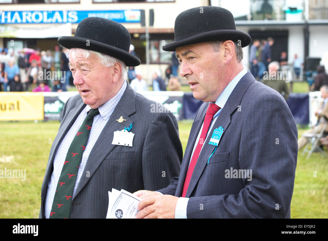 Builth Wells, Powys, Wales, UK. 22nd July 2015. Royal Welsh Show judges with their bowler hats in the cattle ring Stock Photo