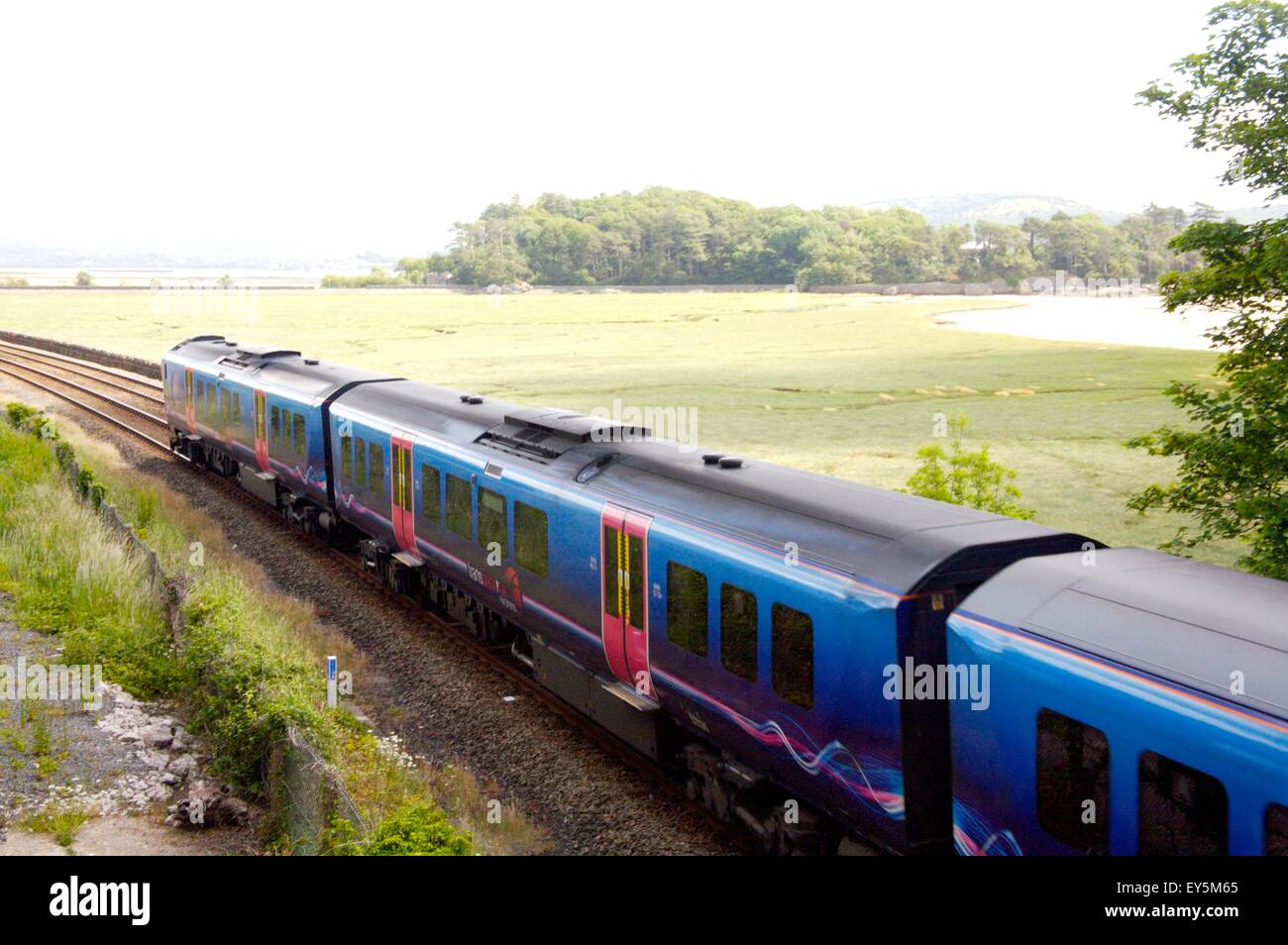 First TransPennine train between Carnforth and Silverdale, Lancashire, England - Stock Image