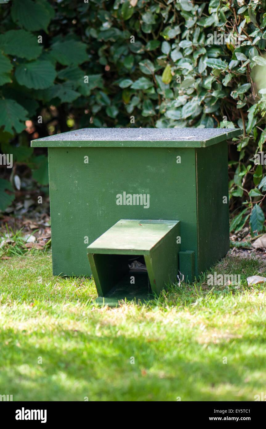 Hedgehog shelter in a garden - Stock Image