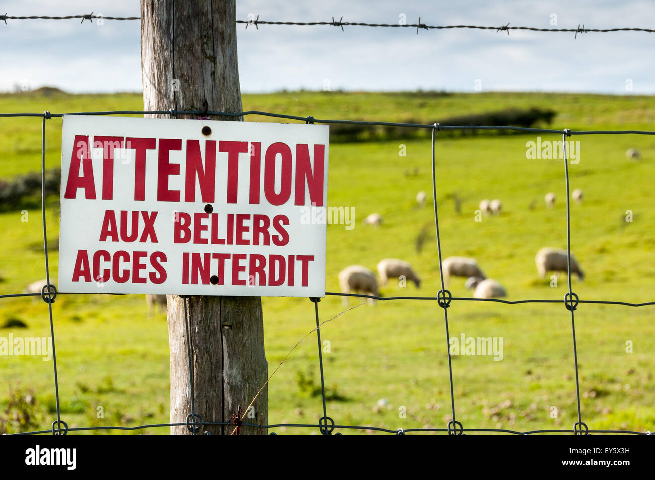 Ban sign 'Be careful to aries' - Stock Image
