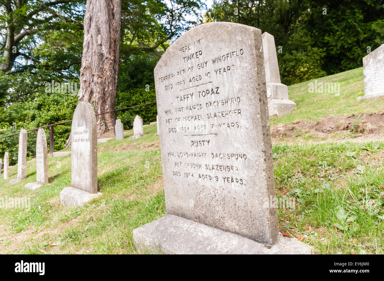 Gravestones for pet dogs in a pet cemetery - Stock Image