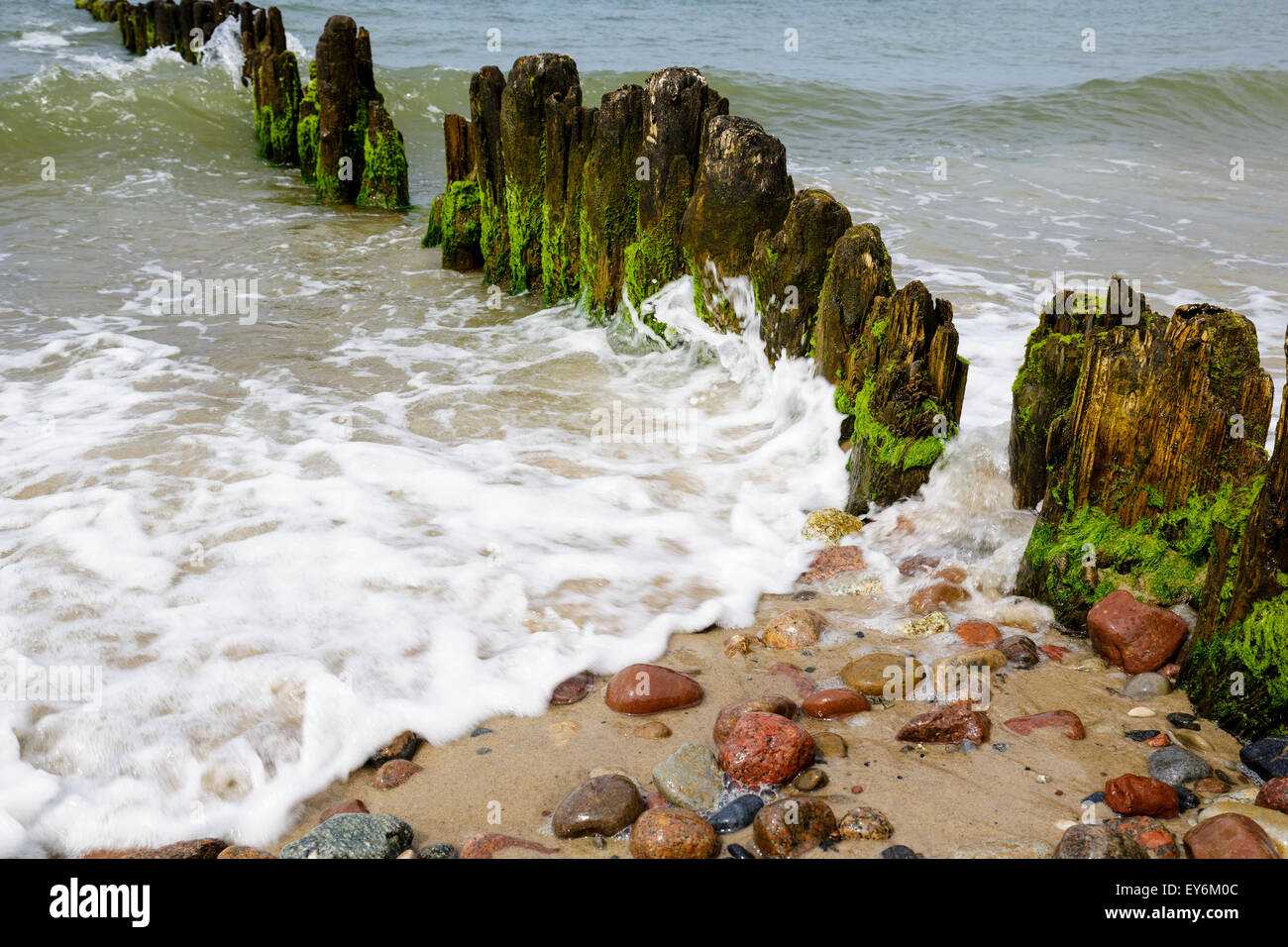 old and rotten wooden breakwaters - Stock Image