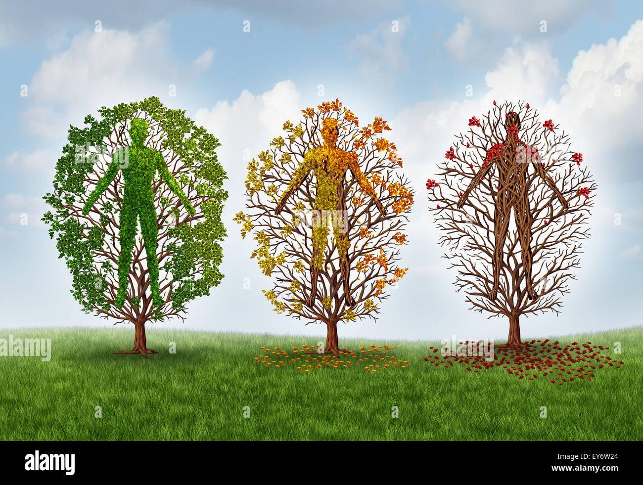 Human aging concept and deterioration of health due to disease in the body as a healthy green tree shaped as a person - Stock Image